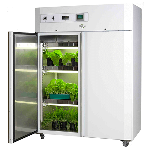 Tree Inside The House Interior Climate Controlled: Quality Laboratory Equipment